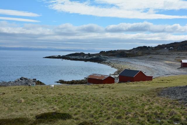 0069 Porsangerfjorden