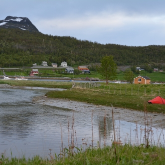 0099 Talvik