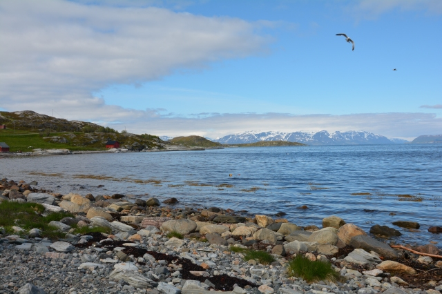 0105 Langfjorden