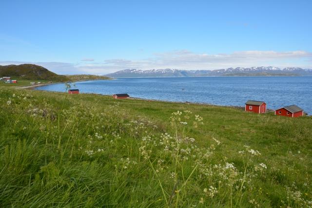 0106 Langfjorden