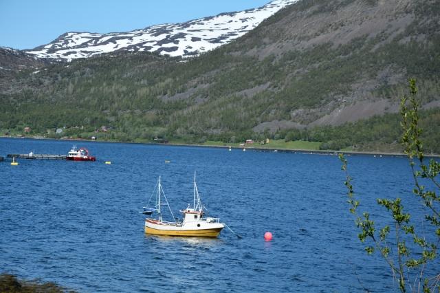 0112 Langfjorden