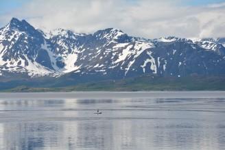 0124 Straumfjorden
