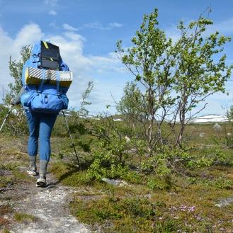 0170 Innover fjellet mot Treriksrøysa