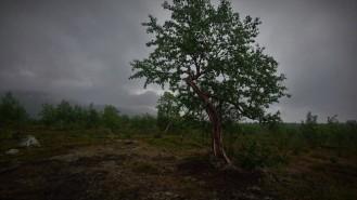 0241 Øvre Dividalen nasjonalpark