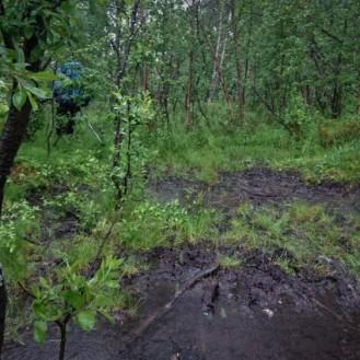 0242 Øvre Dividalen nasjonalpark, Vanja i søla