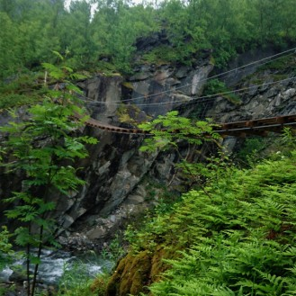0272 Rohkunborri nasjonalpark