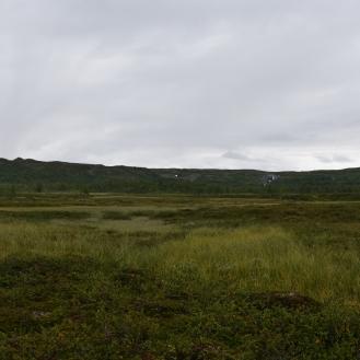 0550 Børgefjell