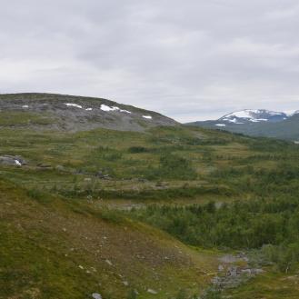 0551 Børgefjell