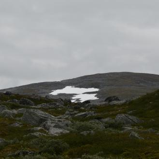 0553 Børgefjell