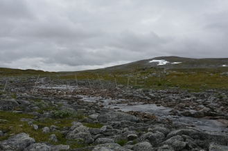0554 Børgefjell