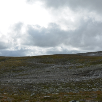 0556 Børgefjell