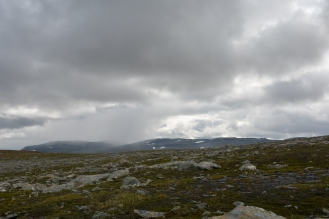 0557 Børgefjell