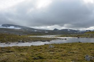 0559 Børgefjell