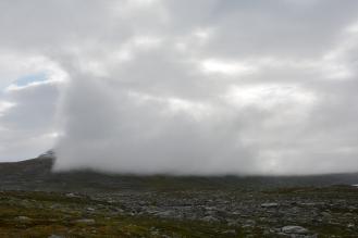 0563 Børgefjell