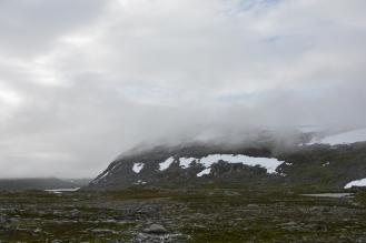 0564 Børgefjell