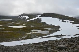 0567 Børgefjell