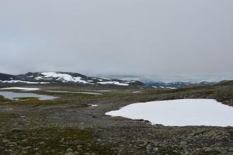 0570 Børgefjell