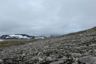 0571 Børgefjell