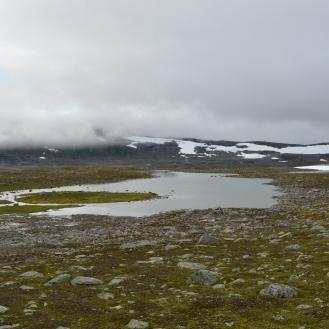 0572 Børgefjell