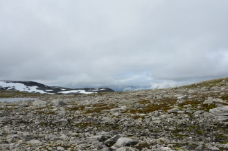0574 Børgefjell