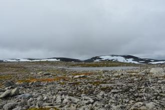 0576 Børgefjell
