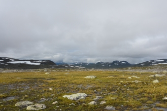 0579 Børgefjell