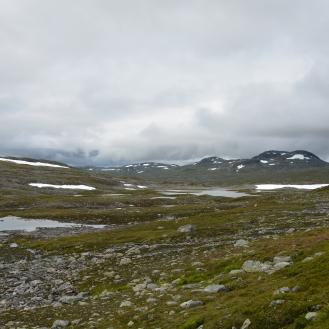 0580 Børgefjell