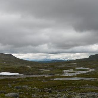 0584 Børgefjell
