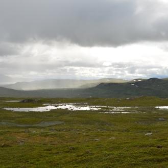 0590 Børgefjell