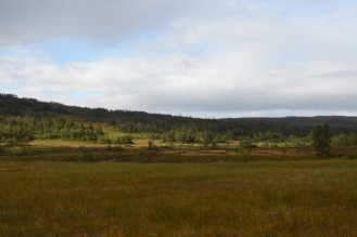 0707 Blåfjella-Skjækerfjella nasjonalpark