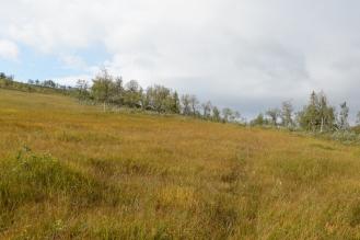0712 Blåfjella-Skjækerfjella nasjonalpark