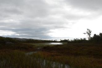 0713 Blåfjella-Skjækerfjella nasjonalpark