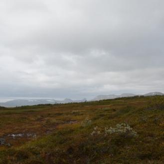 0714 Blåfjella-Skjækerfjella nasjonalpark