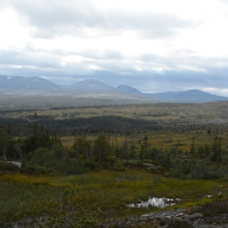 0718 Blåfjella-Skjækerfjella nasjonalpark