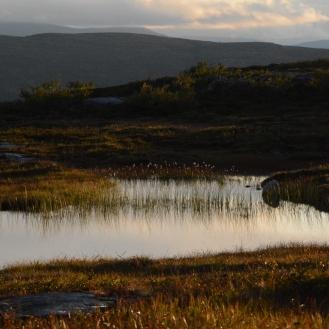 0723 Blåfjella-Skjækerfjella nasjonalpark