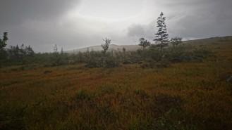 0729 Blåfjella-Skjækerfjella nasjonalpark
