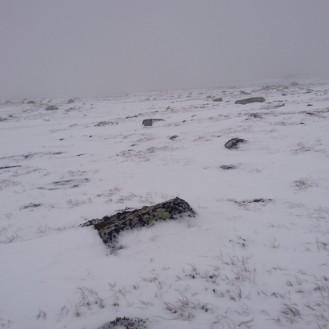 Det ble mer og mer snø samtidig som det begynte å blåse opp. Etter hvert pakket jeg ned kameraet og fikk mer enn nok med å komme meg til hytta.