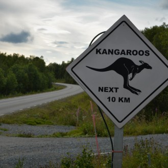 Watch out for kangaroos!